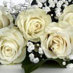 Come scegliere lo stile del matrimonio perfetto: abiti, inviti, decorazioni e location
